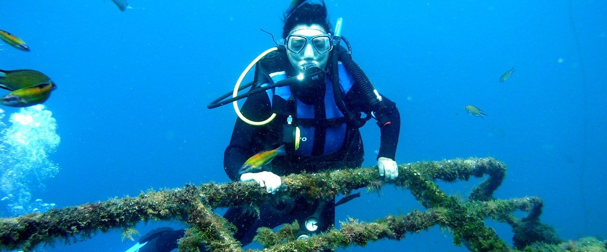 Six reasons why to become a certified PADI Open Water Diver - Diving ...